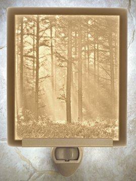 Woodland Sunbeams Flat Lithophane Nightlight