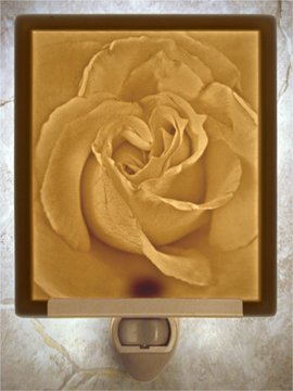 Rose Petals Flat Lithophane Nightlight