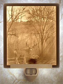 Peaceful Dawn Flat Lithophane Nightlight