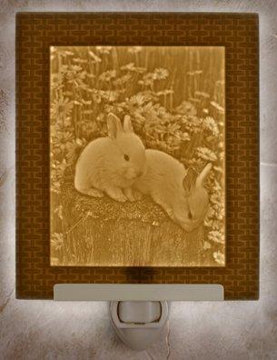 Baby Bunnies Flat Lithophane Nightlight