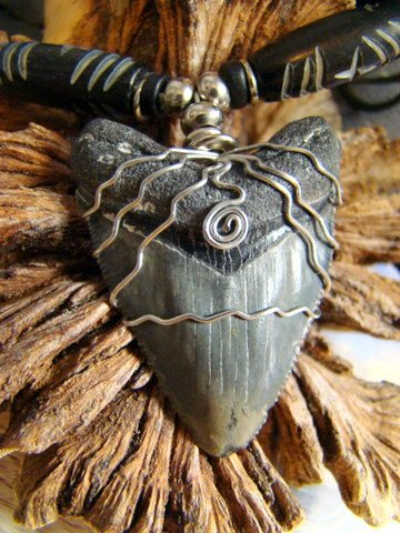 """MEGALODON FOSSIL SHARK TOOTH NECKLACE CARVED BLACK BONE BEADS 1 3/4""""  FREE SHIPPING!"""