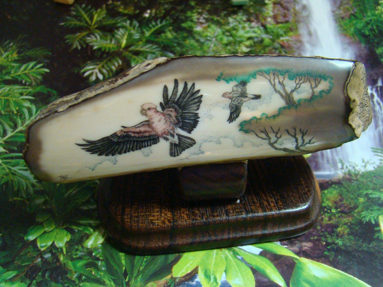 "Vintage Scrimshaw ""Jungle Parrots"" - 4 5/8"" Fossil Walrus Ivory - Wood Stand -From Alaska sticker"