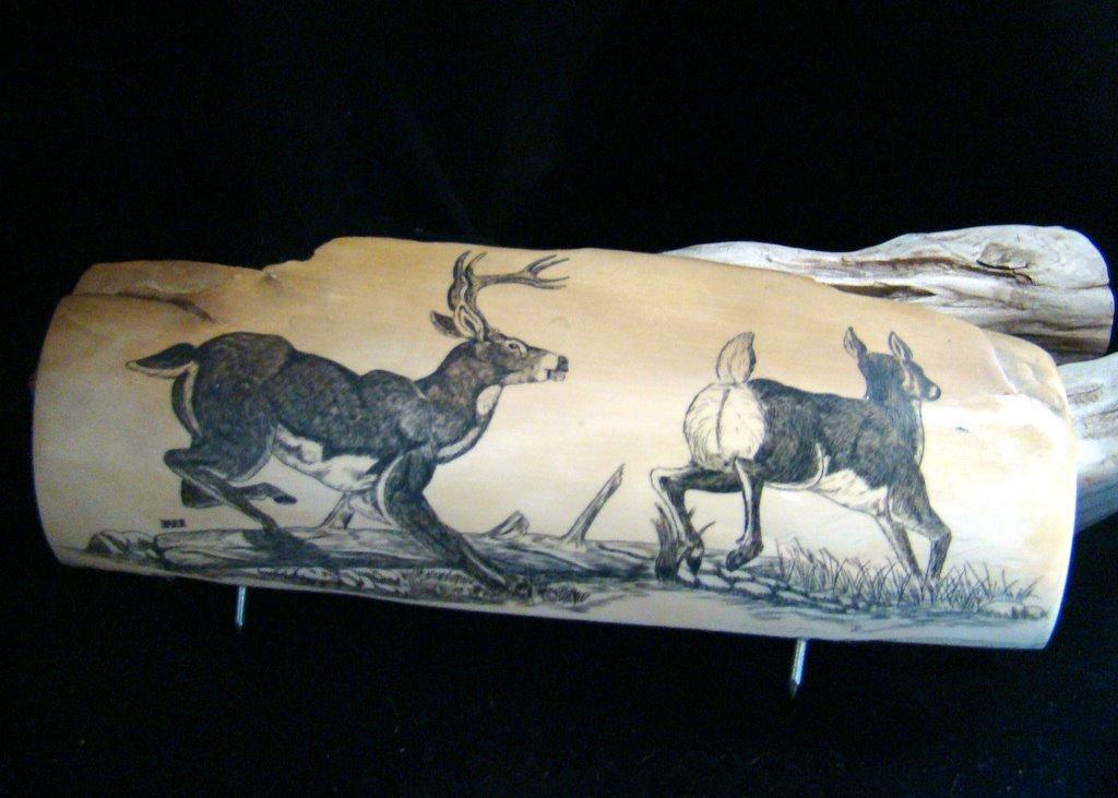 Vintage Scrimshaw Wildlife Deer Buck and Doe - Fossil Mastodon Ivory