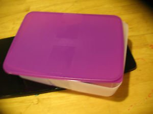 Tupperware freezermates lavender/purple lid clear New set of 2