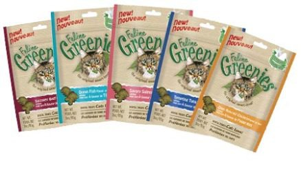 Greenies Feline Dental Tartar Reduction for Cats Savory Salmon 2.5oz x Case of 10
