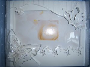 Butterfly Wedding Quinceanera Anniversary Accesories English White