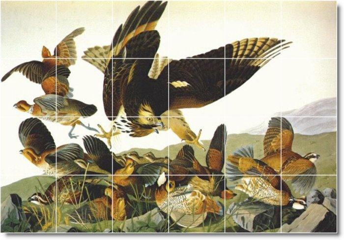 Audubon Birds Mural Tiles Room Contemporary Renovations Interior