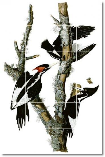 Audubon Birds Tiles Room Mural Interior Contemporary Renovations