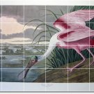 Audubon Birds Dining Room Wall Tiles Home Traditional Renovation