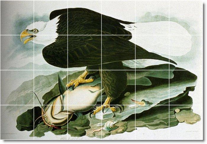 Audubon Birds Room Tile Wall Design Idea Renovations Residential