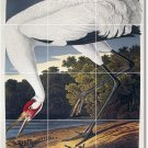 Audubon Birds Tile Room Wall Idea Renovations Residential Design