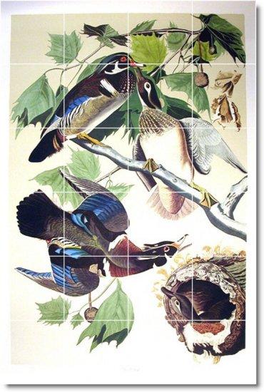 Audubon Birds Tile Wall Room Idea Renovations Design Residential