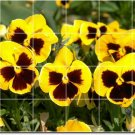 Flowers Image Wall Bathroom Tiles Remodeling Contemporary Home