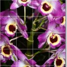 Flowers Picture Mural Floor Kitchen Decorate House Construction