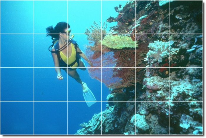 Underwater Picture Tile Dining Room Mural Remodeling Ideas Home