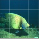 Underwater Picture Wall Tile Room House Renovations Idea Design