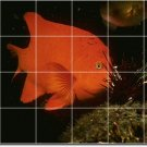 Underwater Photo Room Wall Mural Dining Wall Home Ideas Renovate