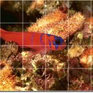 Underwater Photo Room Mural Wall Dining Wall Ideas Renovate Home