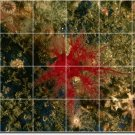 Underwater Picture Tile Floor Kitchen Traditional Decorate Home