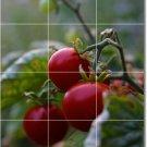 Fruits Vegetables Image Mural Shower Tiles Remodeling Design Home
