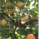 Fruits Vegetables Picture Tile Room Mural Dining Floor Decor