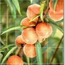 Fruits Vegetables Photo Murals Wall Shower Home Construction Idea