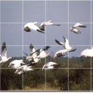 Birds Photo Living Wall Tiles Room Residential Idea Construction