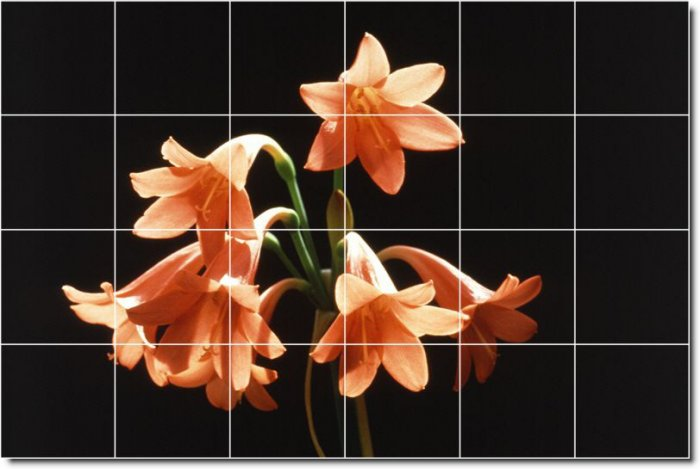 Flowers Picture Bathroom Tiles Shower Remodeling House Decorate