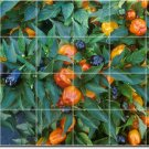 Fruits Vegetables Image Room Floor Tiles Renovation House Modern