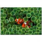 Coral Fish Underwater Ceramic Tile Mural Kitchen Backsplash Bathroom Shower 402994