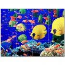 Coral Fish Underwater Ceramic Tile Mural Kitchen Backsplash Bathroom Shower 403003