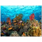 Coral Fish Underwater Ceramic Tile Mural Kitchen Backsplash Bathroom Shower 403011