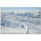 Winter Snow Ceramic Tile Mural Kitchen Backsplash Bathroom Shower 401977