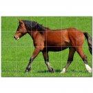 Horse Ceramic Tile Mural Kitchen Backsplash Bathroom Shower 402878
