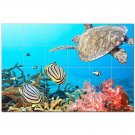 Turtle Ceramic Tile Mural Kitchen Backsplash Bathroom Shower 402929