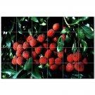Fruits Vegetables Ceramic Tile Mural Kitchen Backsplash Bathroom Shower 405208