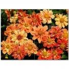 Flowers Ceramic Tile Mural Kitchen Backsplash Bathroom Shower 402290