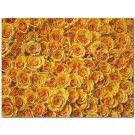 Flowers Ceramic Tile Mural Kitchen Backsplash Bathroom Shower 402343
