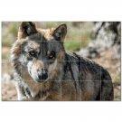 Wolf Wolves Ceramic Tile Mural Kitchen Backsplash Bathroom Shower 403141