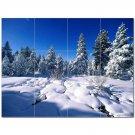 Winter Photo Ceramic Tile Mural Kitchen Backsplash Bathroom Shower 406413