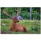 Deer Ceramic Tile Mural Kitchen Backsplash Bathroom Shower 402757
