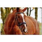 Horse Ceramic Tile Mural Kitchen Backsplash Bathroom Shower 402832