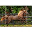 Horse Picture Ceramic Tile Mural Kitchen Backsplash Bathroom Shower 405293