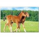 Horse Picture Ceramic Tile Mural Kitchen Backsplash Bathroom Shower 405295