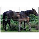 Horse Picture Ceramic Tile Mural Kitchen Backsplash Bathroom Shower 405297