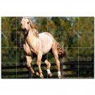 Horse Picture Ceramic Tile Mural Kitchen Backsplash Bathroom Shower 405314
