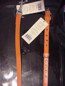 "Orange Dog Collar & Matching Leash Small Dog 11"" to 14"""