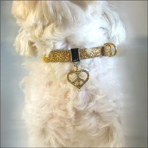 Twinkle Collar Gold- Peace in Heart Necklace Dog Cat