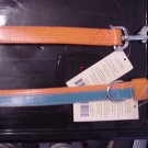Orange Blue  Dog Collar & Matching Leash  Large  19 22""