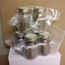 Pre-Sterilized Pint Grain Jars 6 Pack